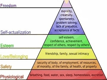 Abraham Maslow's Pyramid of Needs +